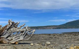 Photo 7: 6601 RAZOR POINT Road: Pender Island House for sale (Islands-Van. & Gulf)  : MLS®# R2460989