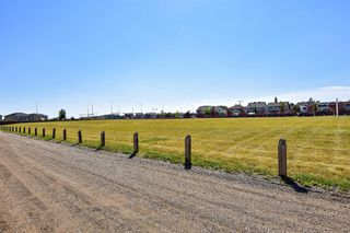 Photo 35: 27 Prestwick Place SE in Calgary: McKenzie Towne Detached for sale : MLS®# A1025938