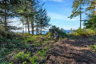 Photo 15: 7295 Francis Rd in : Sk Whiffin Spit Land for sale (Sooke)  : MLS®# 858315