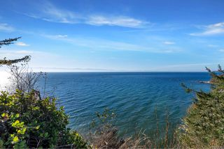 Photo 14: 7295 Francis Rd in : Sk Whiffin Spit Land for sale (Sooke)  : MLS®# 858315