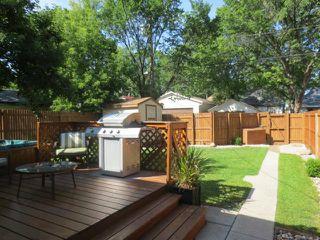 Photo 19: 93 Martin Avenue West in WINNIPEG: East Kildonan Residential for sale (North East Winnipeg)  : MLS®# 1220880