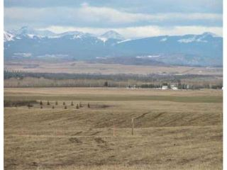 Photo 9: 213 MORGANS Way in CALGARY: Rural Rocky View MD Vacant Lot for sale : MLS®# C3545994