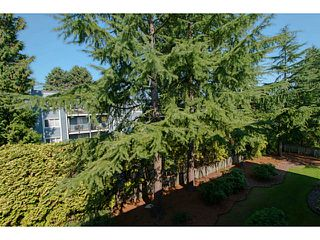 "Photo 9: 306 1121 HOWIE Avenue in Coquitlam: Central Coquitlam Condo for sale in ""The Willows"" : MLS®# V1027721"