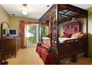 Photo 10: 3801 BAYRIDGE AV in West Vancouver: Bayridge House for sale : MLS®# V1023302