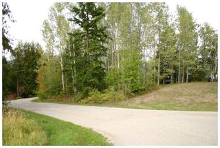 Photo 14: Lot 1 Eagle Bay Road in Eagle Bay: Eagle Bay Estates Vacant Land for sale : MLS®# 10105919