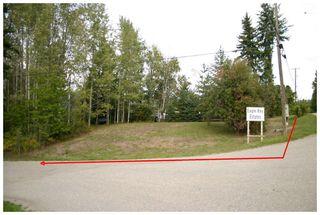 Photo 13: Lot 1 Eagle Bay Road in Eagle Bay: Eagle Bay Estates Vacant Land for sale : MLS®# 10105919