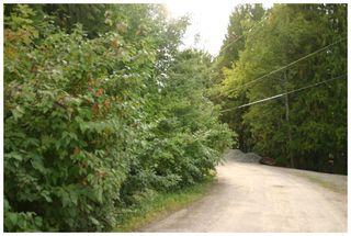 Photo 23: Lot 1 Eagle Bay Road in Eagle Bay: Eagle Bay Estates Vacant Land for sale : MLS®# 10105919