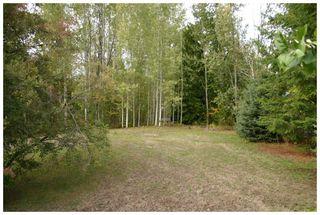 Photo 6: Lot 1 Eagle Bay Road in Eagle Bay: Eagle Bay Estates Vacant Land for sale : MLS®# 10105919