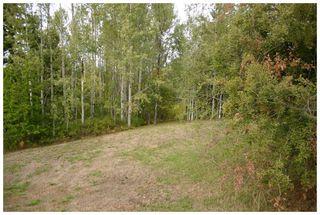 Photo 7: Lot 1 Eagle Bay Road in Eagle Bay: Eagle Bay Estates Vacant Land for sale : MLS®# 10105919
