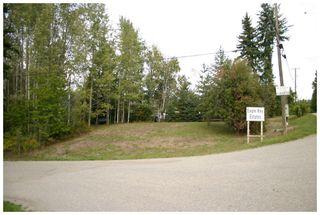 Photo 12: Lot 1 Eagle Bay Road in Eagle Bay: Eagle Bay Estates Vacant Land for sale : MLS®# 10105919