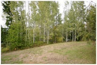 Photo 8: Lot 1 Eagle Bay Road in Eagle Bay: Eagle Bay Estates Vacant Land for sale : MLS®# 10105919