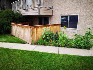 Photo 2: 3 10836 116 Street in Edmonton: Zone 08 Condo for sale : MLS®# E4166948