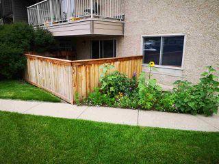 Photo 1: 3 10836 116 Street in Edmonton: Zone 08 Condo for sale : MLS®# E4166948