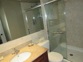 Photo 12: 6403 15 Avenue in Edmonton: Zone 29 House for sale : MLS®# E4173088