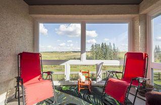 Photo 28: 1326 ADAMSON Drive SW in Edmonton: Zone 55 House for sale : MLS®# E4175430