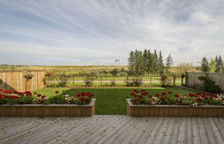 Photo 6: 1326 ADAMSON Drive SW in Edmonton: Zone 55 House for sale : MLS®# E4175430