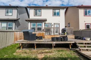 Photo 32: 2124 30 Street in Edmonton: Zone 30 House for sale : MLS®# E4197115