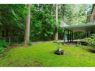 """Photo 18: 4067 199A Street in Langley: Brookswood Langley House for sale in """"BROOKSWOOD"""" : MLS®# R2461084"""