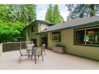 """Photo 19: 4067 199A Street in Langley: Brookswood Langley House for sale in """"BROOKSWOOD"""" : MLS®# R2461084"""