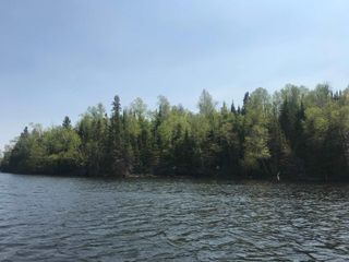Photo 11: 5 Scott IS in Kenora: Vacant Land for sale : MLS®# TB191553