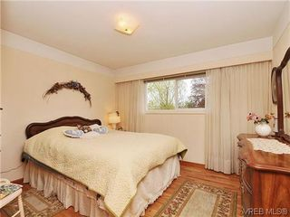 Photo 11: 1726 Mortimer St in VICTORIA: SE Cedar Hill Single Family Detached for sale (Saanich East)  : MLS®# 637109