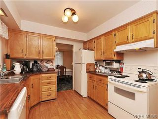 Photo 8: 1726 Mortimer St in VICTORIA: SE Cedar Hill Single Family Detached for sale (Saanich East)  : MLS®# 637109