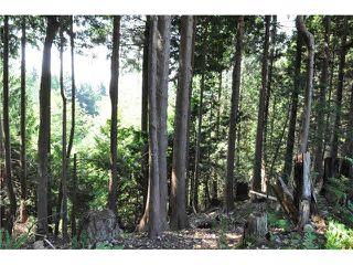 """Photo 8: LOT 6 BAY ROAD in Sechelt: Sechelt District Home for sale in """"DAVIS BAY"""" (Sunshine Coast)  : MLS®# V1073026"""