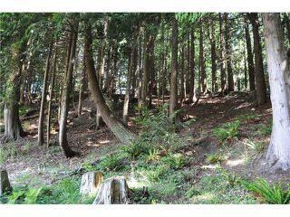 """Photo 7: LOT 6 BAY ROAD in Sechelt: Sechelt District Land for sale in """"DAVIS BAY"""" (Sunshine Coast)  : MLS®# V1073026"""