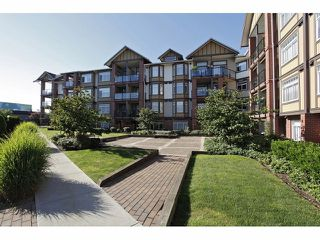 Photo 6: # 149 5660 201A ST in Langley: Langley City Condo for sale : MLS®# F1426511