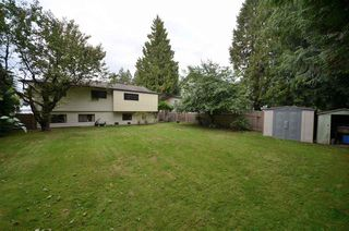 Photo 16: 20830 117 AVENUE in Maple Ridge: Southwest Maple Ridge House for sale : MLS®# R2001082