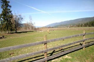 Photo 28: 21 McManus Road: Grindrod House for sale (Shuswap Region)  : MLS®# 10114200