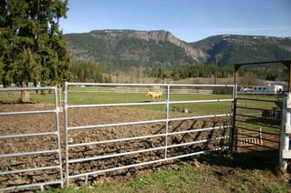 Photo 38: 21 McManus Road: Grindrod House for sale (Shuswap Region)  : MLS®# 10114200