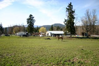 Photo 34: 21 McManus Road: Grindrod House for sale (Shuswap Region)  : MLS®# 10114200