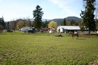 Photo 33: 21 McManus Road: Grindrod House for sale (Shuswap Region)  : MLS®# 10114200