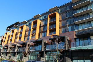 Photo 1:  in : Marpole Condo for rent (Vancouver West)
