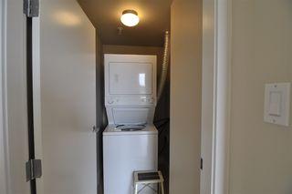 Photo 12: 806 6608 28 Avenue in Edmonton: Zone 29 Condo for sale : MLS®# E4172956