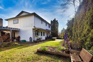 Photo 19: 10380 ATHABASCA Drive in Richmond: McNair House for sale : MLS®# R2436007