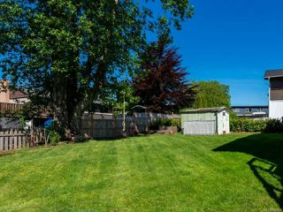 Photo 16: 652 Elkhorn Rd in CAMPBELL RIVER: CR Campbell River Central House for sale (Campbell River)  : MLS®# 839541