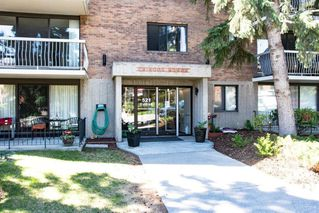 Main Photo: 302 521 57 Avenue SW in Calgary: Windsor Park Apartment for sale : MLS®# C4289901