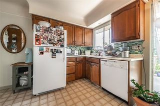 Photo 10: 229 Howe St in Victoria: Vi Fairfield East House for sale : MLS®# 844362