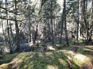 Photo 11: lot 170 Halibut Hill Rd in : Isl Mudge Island Land for sale (Islands)  : MLS®# 857458