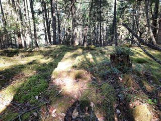 Photo 10: lot 170 Halibut Hill Rd in : Isl Mudge Island Land for sale (Islands)  : MLS®# 857458