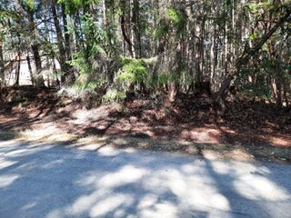 Photo 3: lot 170 Halibut Hill Rd in : Isl Mudge Island Land for sale (Islands)  : MLS®# 857458
