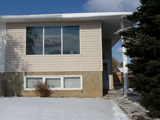 Main Photo: 109 Dovertree Place SE in Calgary: Dover Semi Detached for sale : MLS®# A1044832