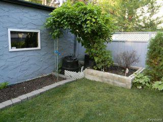 Photo 7: 304 Cordova Street in WINNIPEG: River Heights / Tuxedo / Linden Woods Residential for sale (South Winnipeg)  : MLS®# 1420618
