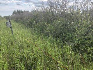 Photo 7: 0 520 Highway in Lac Du Bonnet RM: RM of Lac du Bonnet Residential for sale (R28)  : MLS®# 1923428