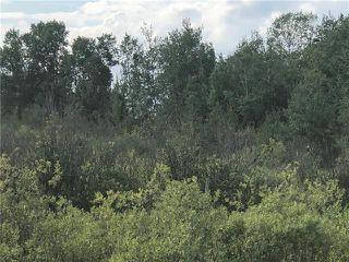 Photo 13: 0 520 Highway in Lac Du Bonnet RM: RM of Lac du Bonnet Residential for sale (R28)  : MLS®# 1923428