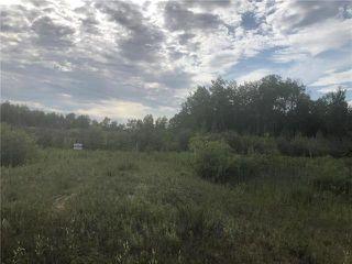 Photo 10: 0 520 Highway in Lac Du Bonnet RM: RM of Lac du Bonnet Residential for sale (R28)  : MLS®# 1923428