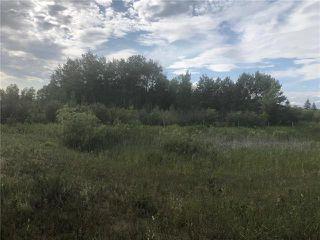 Photo 8: 0 520 Highway in Lac Du Bonnet RM: RM of Lac du Bonnet Residential for sale (R28)  : MLS®# 1923428