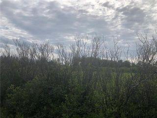Photo 5: 0 520 Highway in Lac Du Bonnet RM: RM of Lac du Bonnet Residential for sale (R28)  : MLS®# 1923428